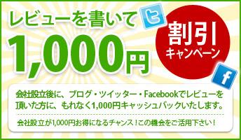 ���r���[��������1,000�~����L�����y�[��
